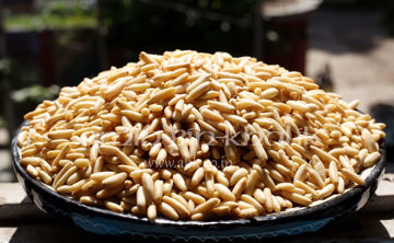 Picture of Chilgoza Pine nuts without shell, 250 gm