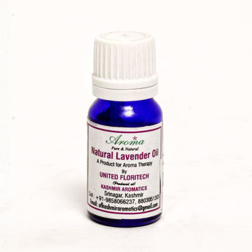 Picture for category Lavender Oil